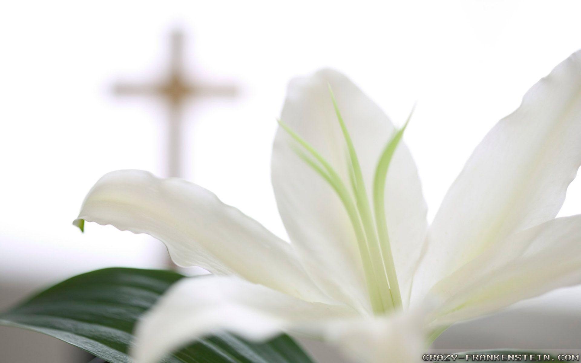 Christian Easter Wallpaper Desktop (04)