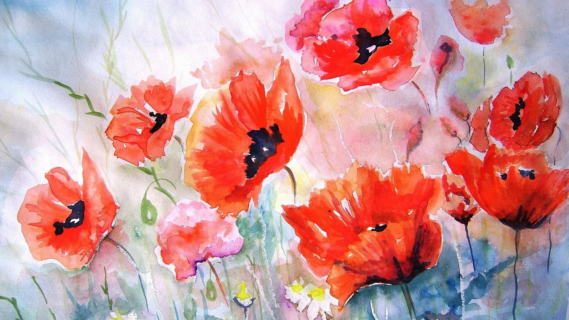 Nature Beautiful Painting Pretty Awesome Poppies Watercolor Flowers Artwork  Red Desktop Wallpaper Flower Pictures