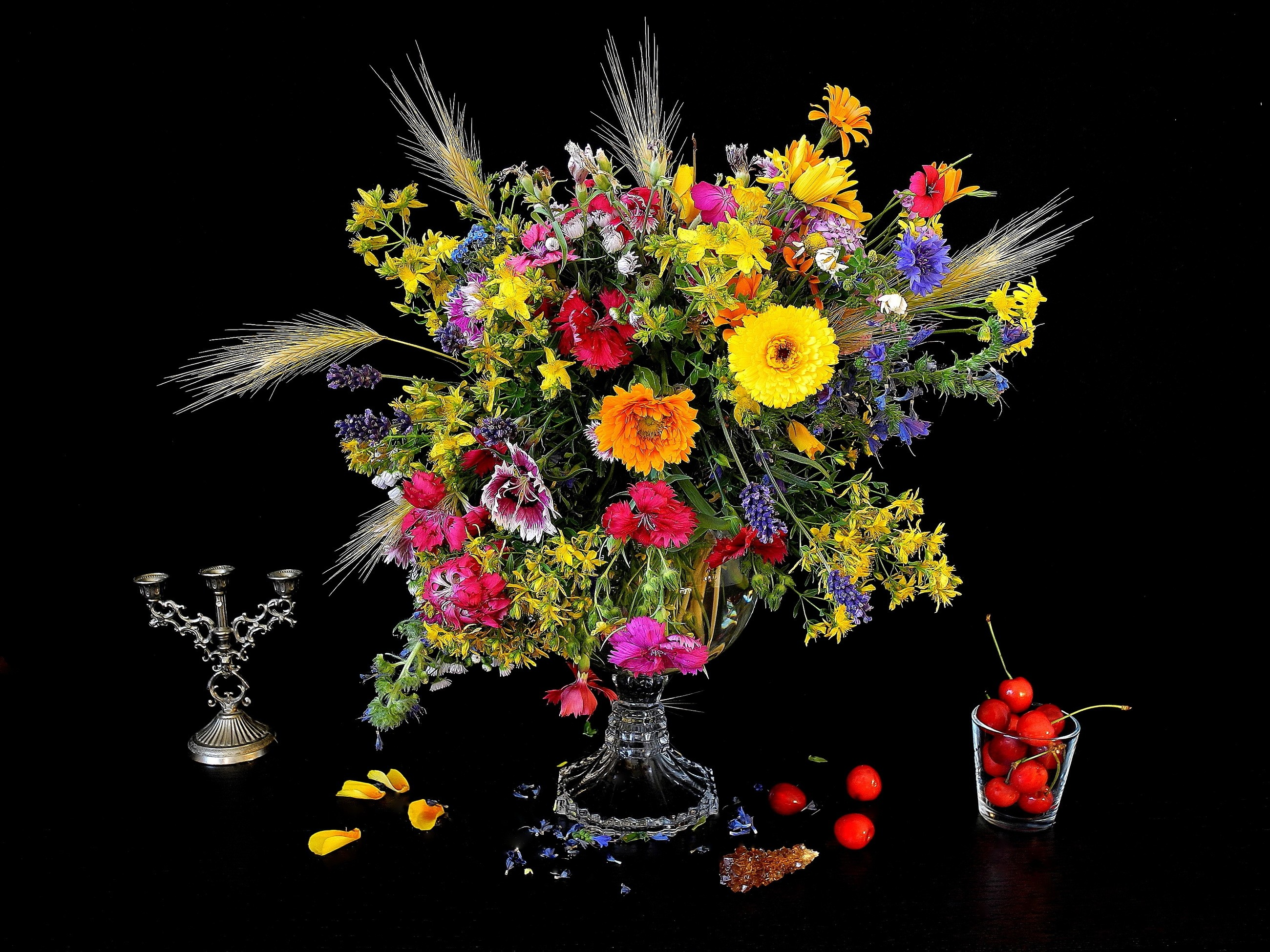 Photography – Still Life Cherry Vase Colorful Colors Flower Wallpaper