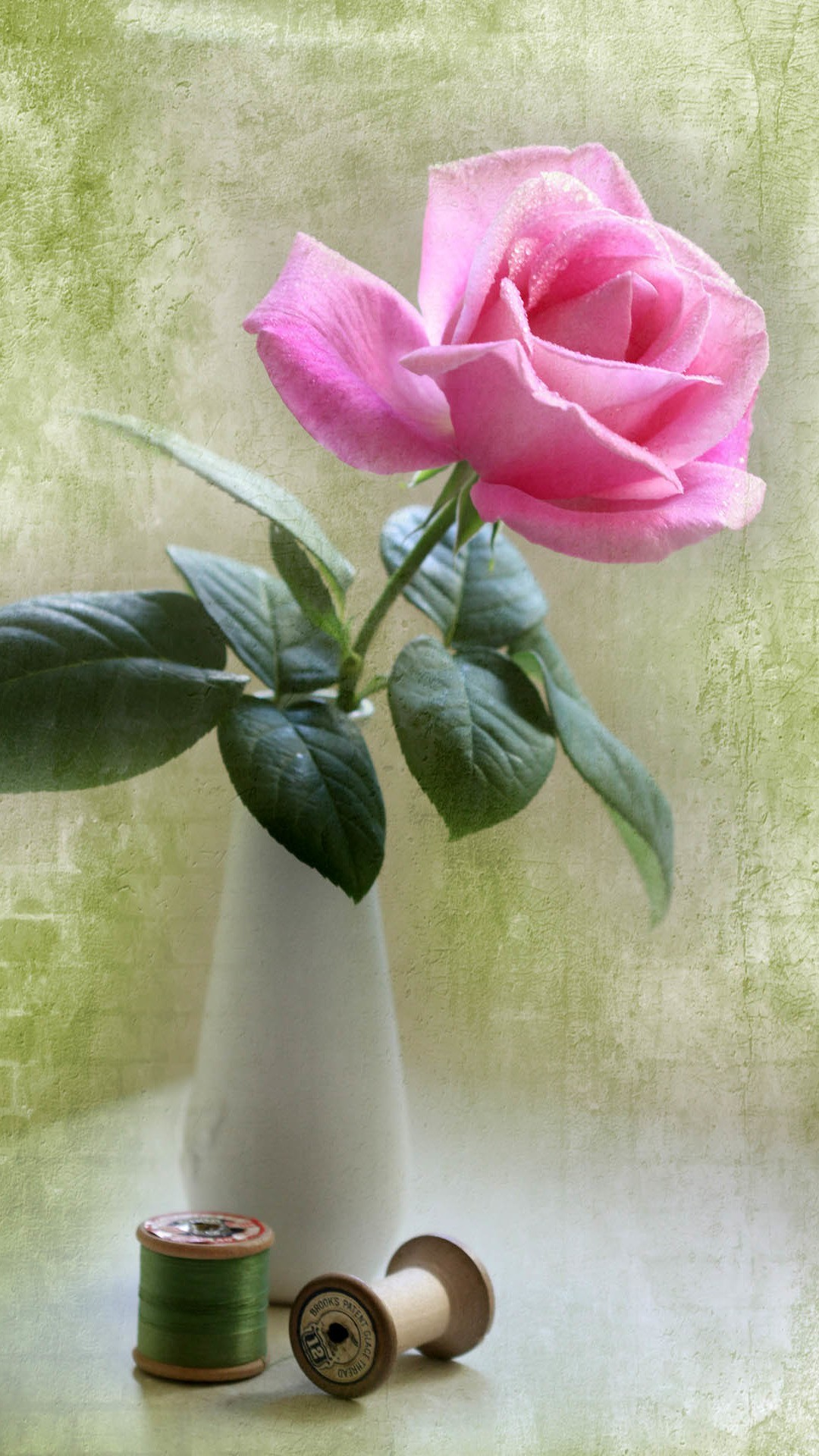 Elegant Pink Rose Vase Ikebana Art #iPhone #6 #plus #wallpaper