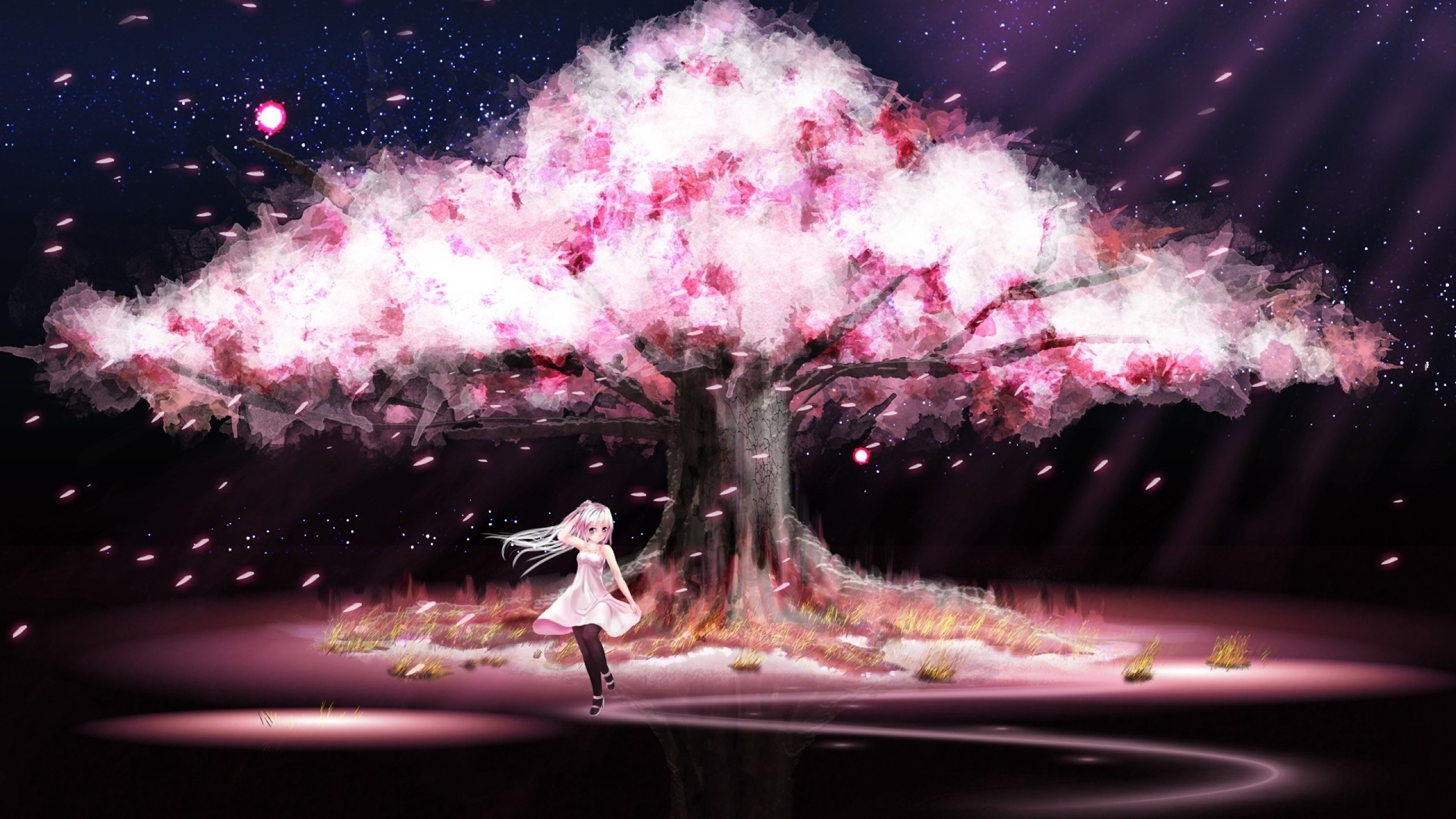 Cherry Blossom Tree Wallpaper Tag – WalOps.com