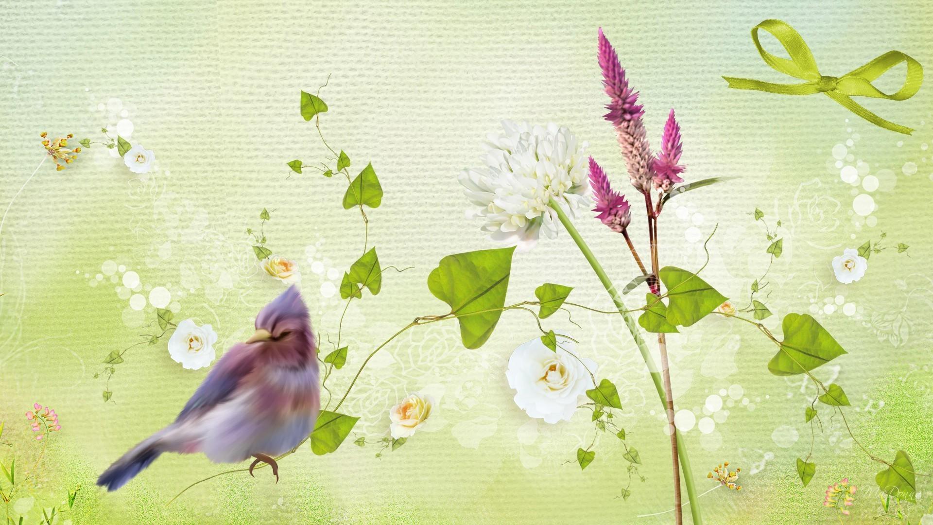 Flowers – April Ribbon Bird Summer Purple Clover Spring Roses Green Colors  Abstract Flower Desktop Wallpaper