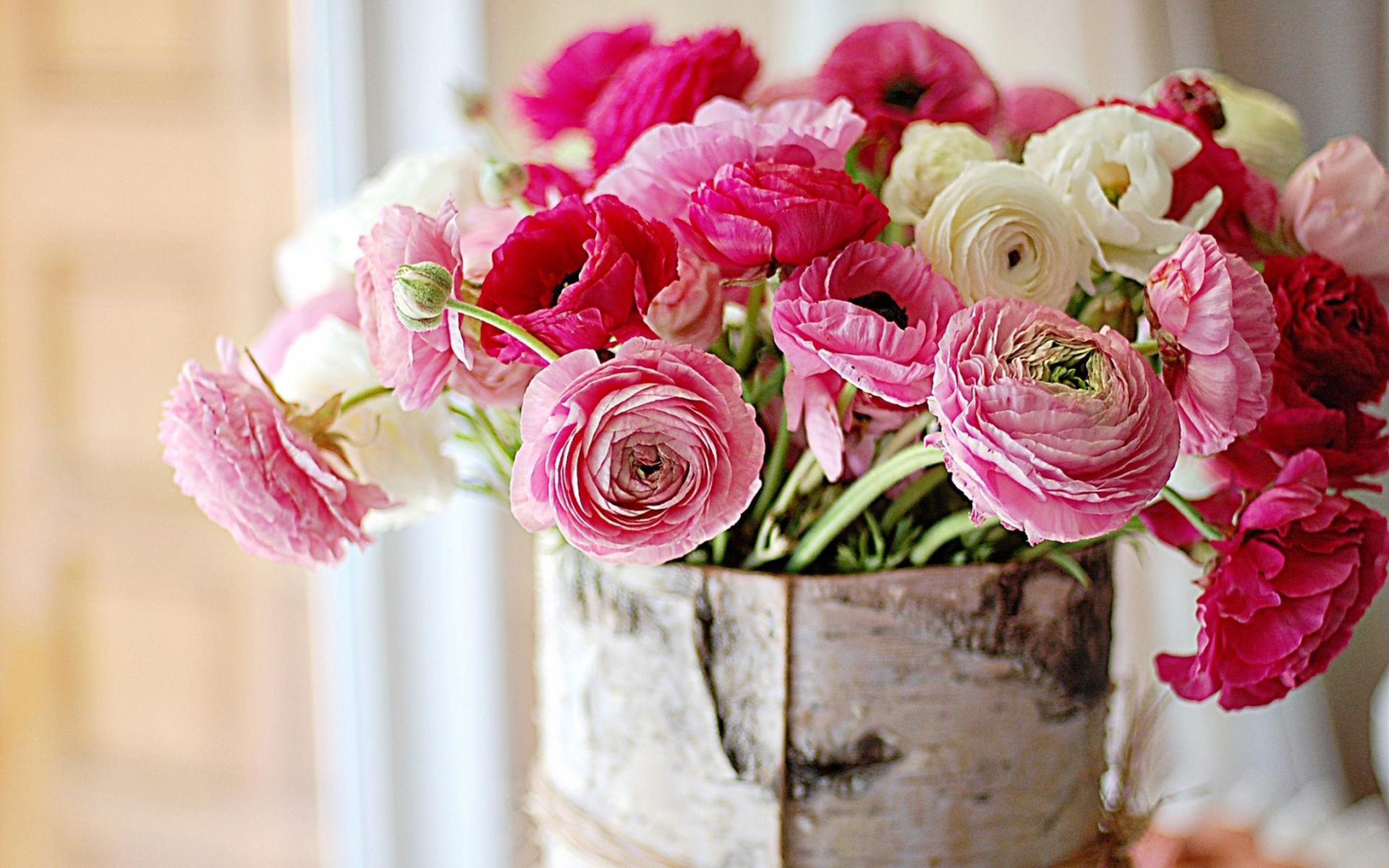 Fresh flowers peonies
