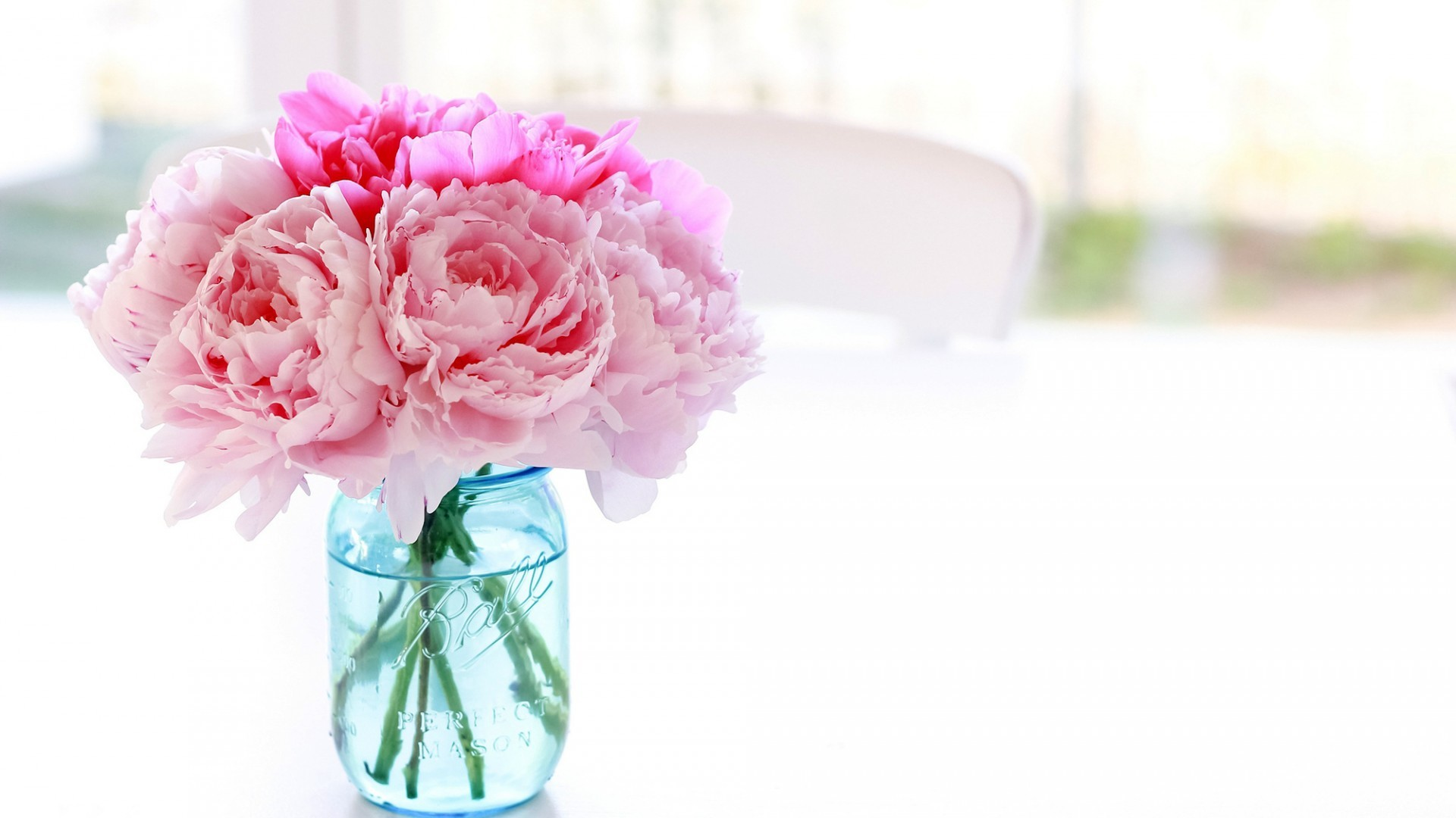 Wallpaper bouquet, peony, bank, Pale pink peonies in a bank.