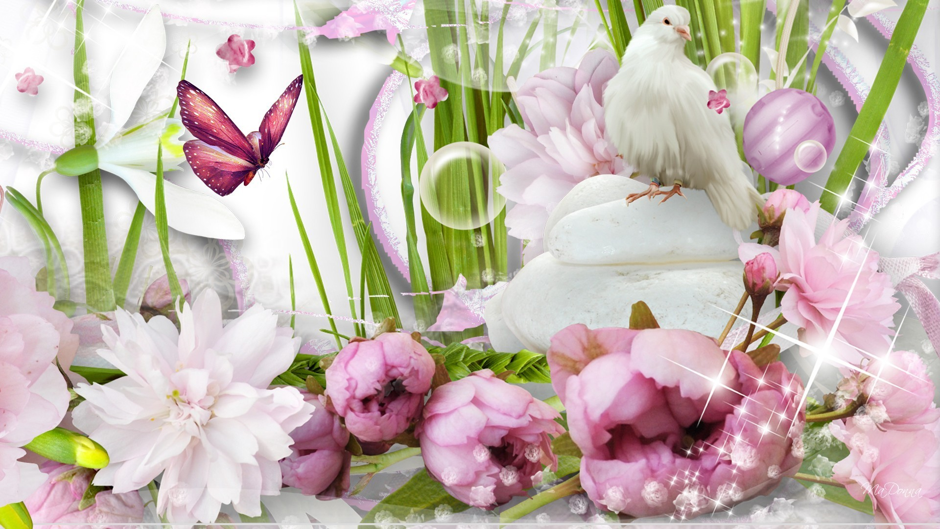 Bird Tag – Flowers Papillon Leaves Butterfly Peonies Bird Fleurs Spring  Brilliant Sparkle Pigeon Dove Garden