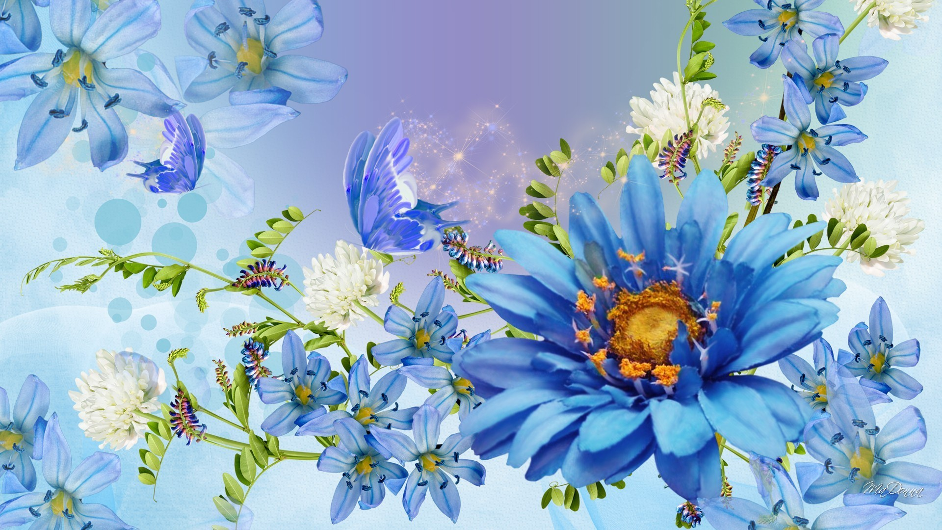 Beautiful Spring Blue Blossoms Bright Clover Blues Papillon Butterfly  Fleurs Lavender Blooms Flowers Summer Flower Wallpapers