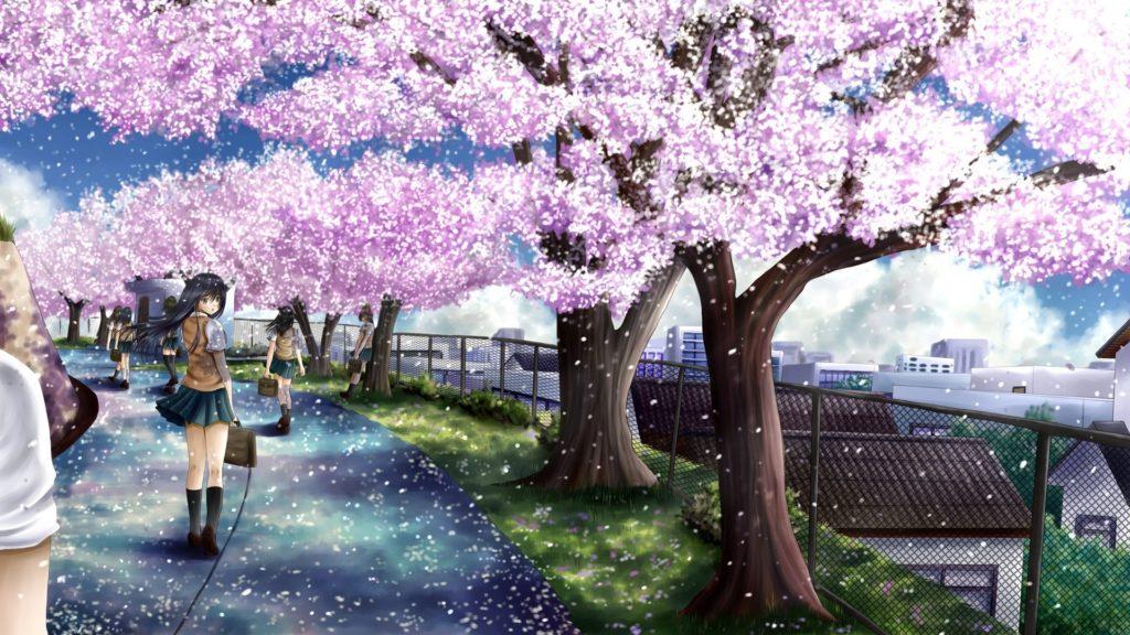uploads/2014/11/cherry-blossom-anime-hd .