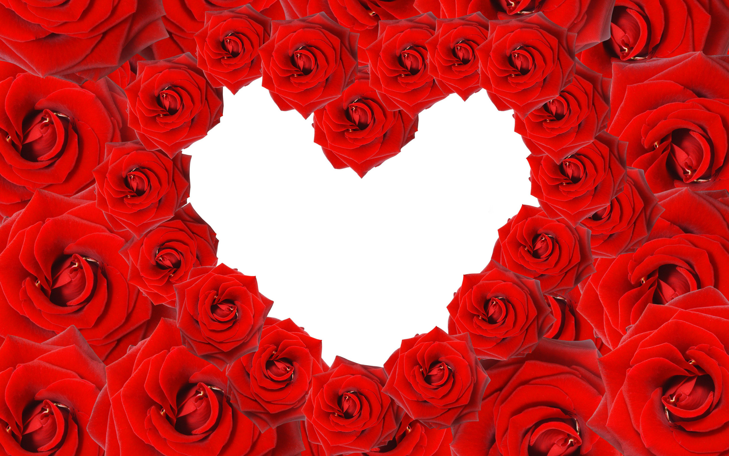 Red Roses & Love Heart