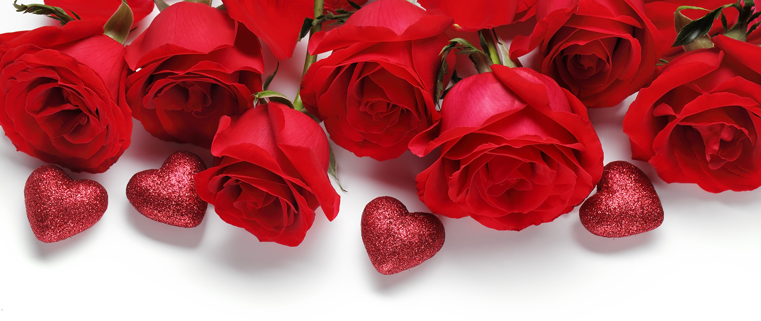 Wallpaper Valentine's Day Heart Red Roses Flowers White background 2560×1080