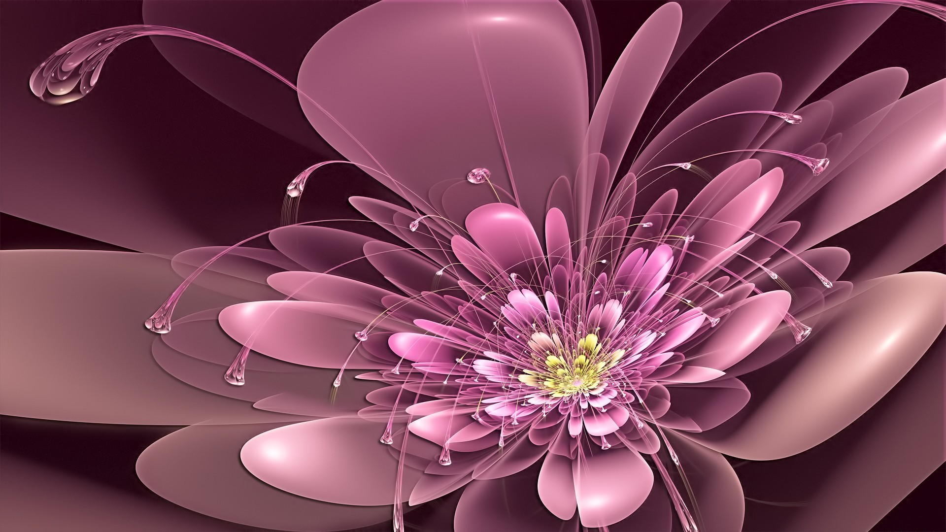 3d abstract flower Wallpapers