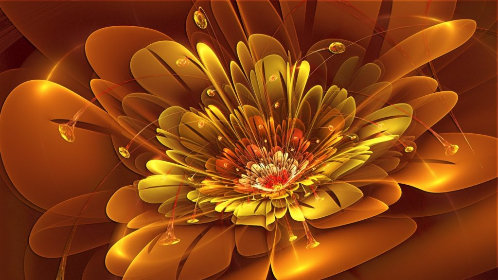 Abstract Flower Wallpaper   Rose Pictures
