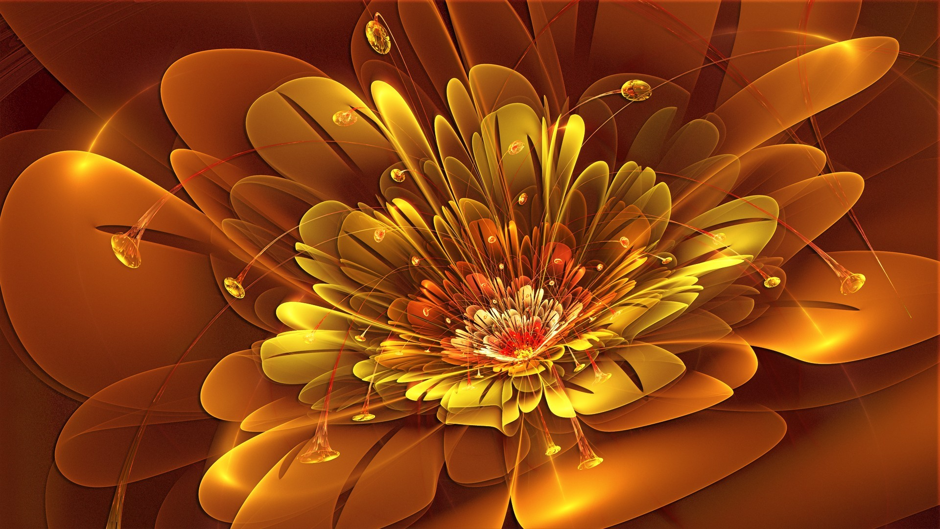 Abstract Flower Wallpaper | Rose Pictures