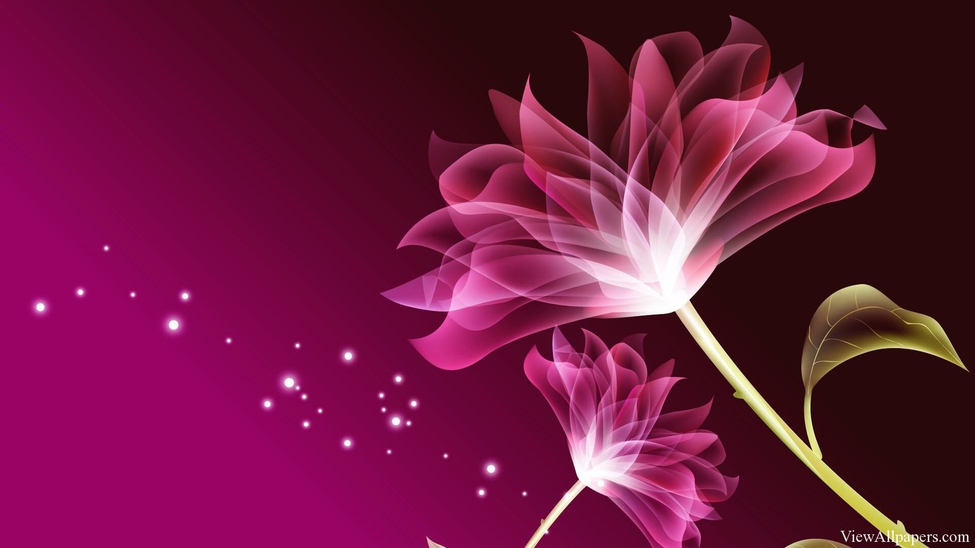 Beautiful Flowers Wallpapers Collection (4)