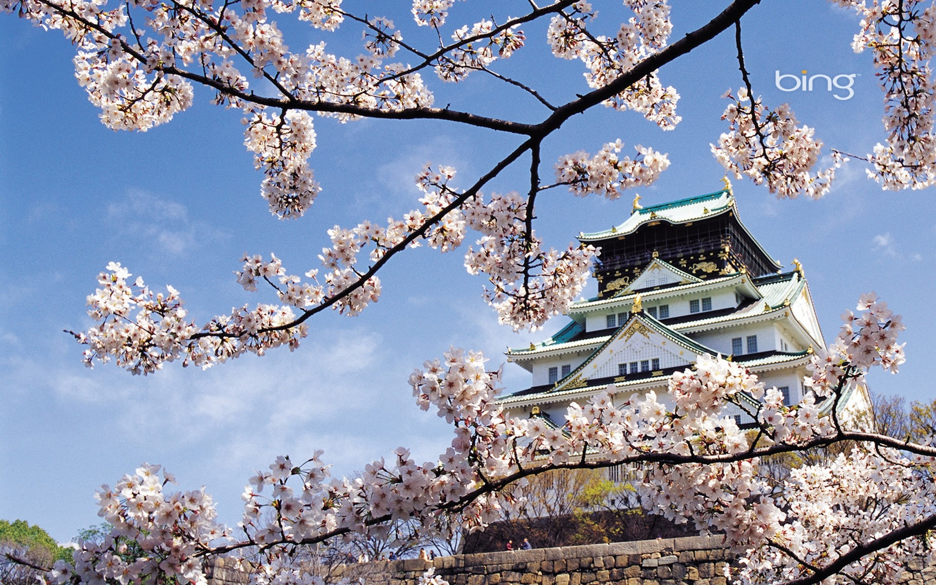 Wallpaper Spring, Cherry, Blossom, Palace, Japan, Architecture