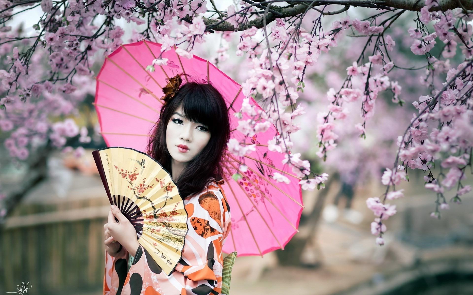 women, Cherry Blossom, Japan, Fans, Parasol Wallpapers HD / Desktop and  Mobile Backgrounds