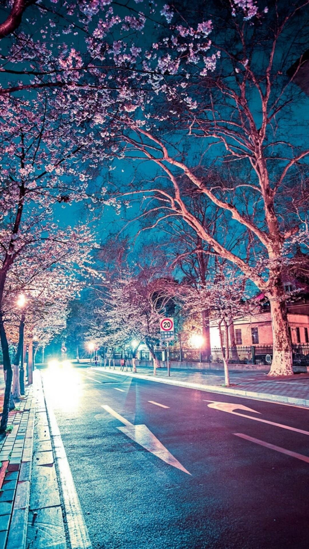 Japanese Street Cherry Blossom Night Scenery iPhone 8 wallpaper