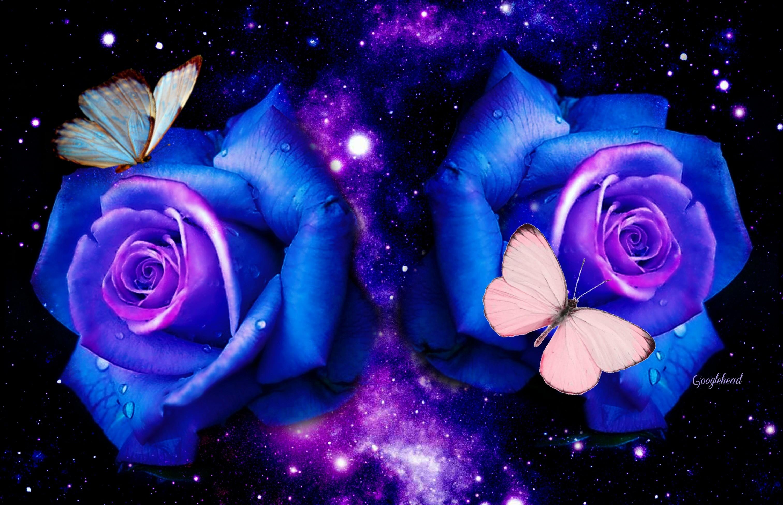 Roses & Butterflies – Fantasy Wallpaper ID 1650678 – Desktop Nexus Abstract
