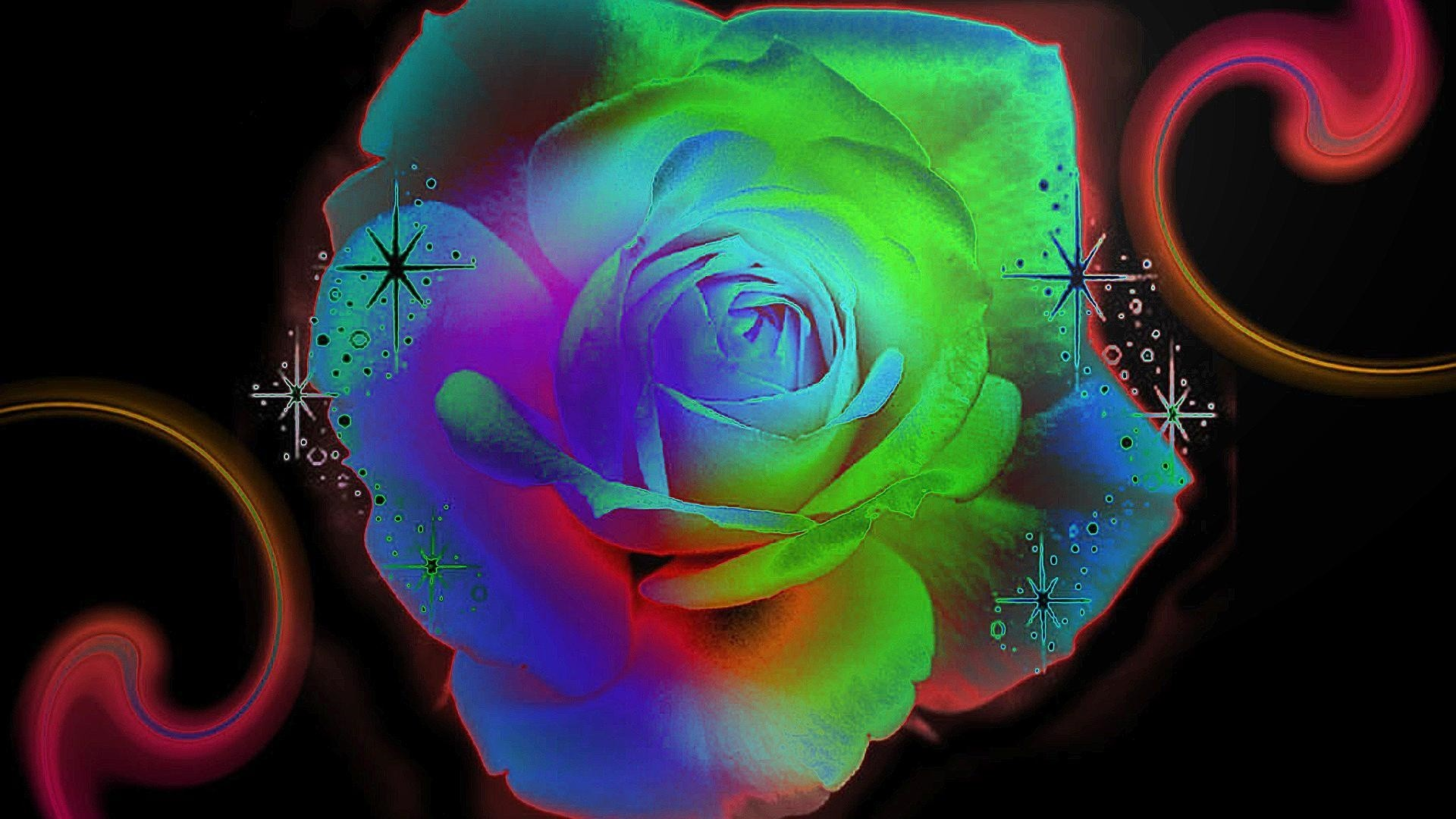 Bright roses roses) via www.