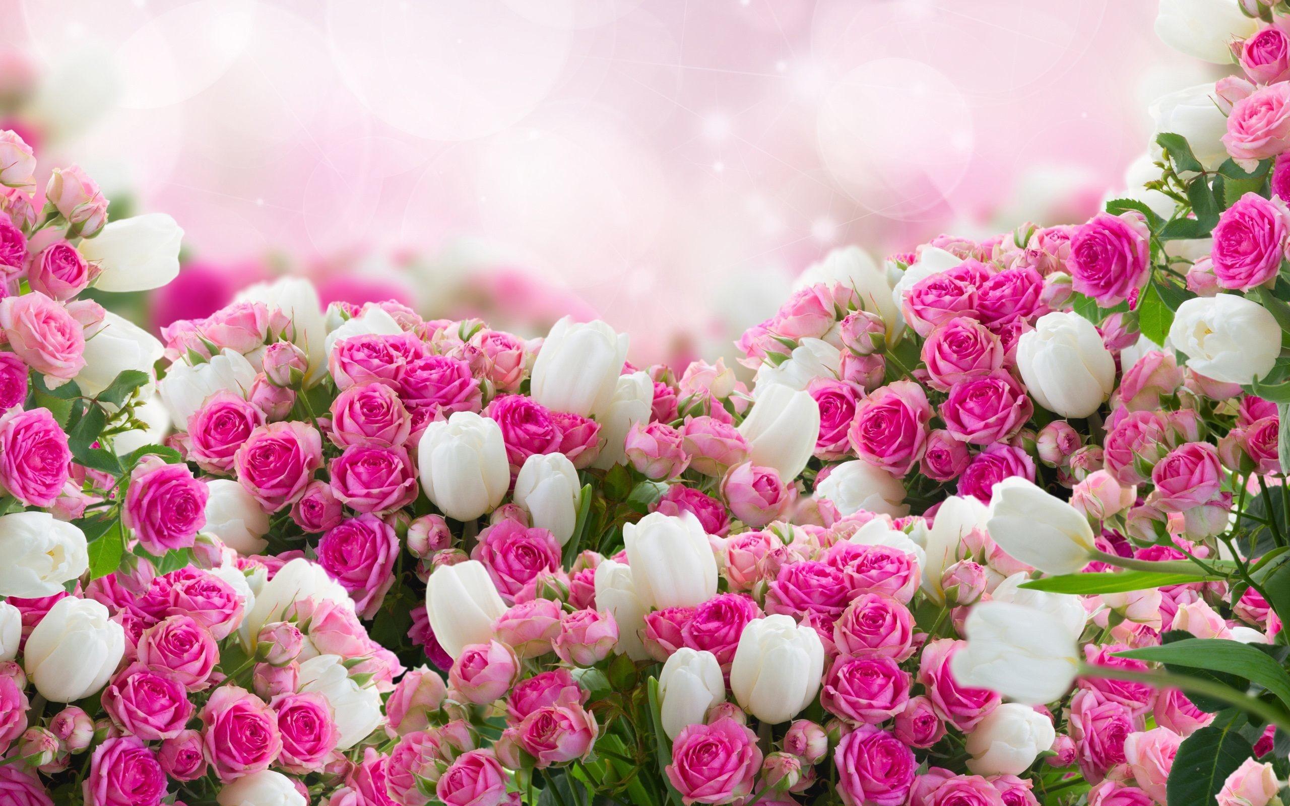 flower wallpaper-22