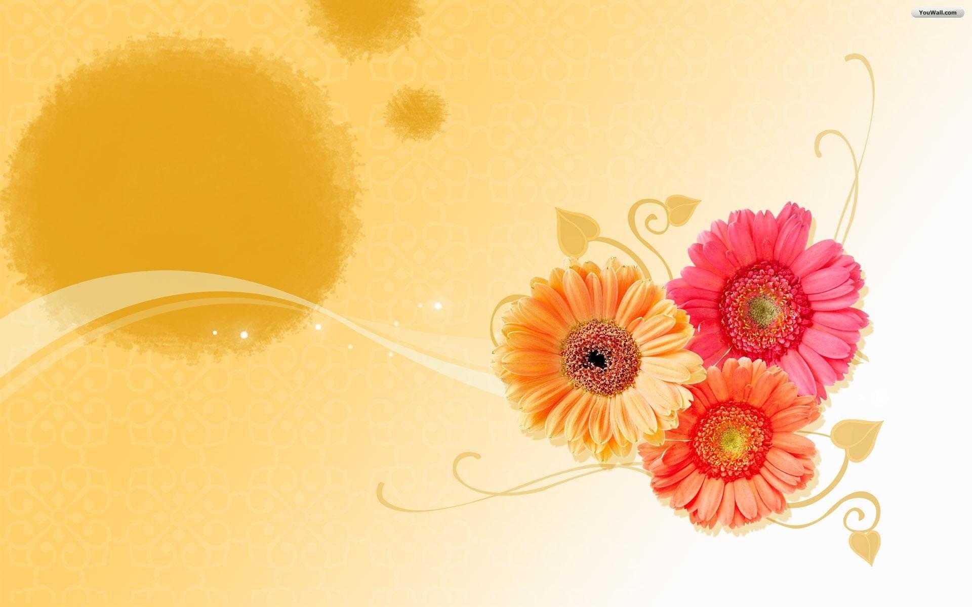 Flower Wallpapers Hd …