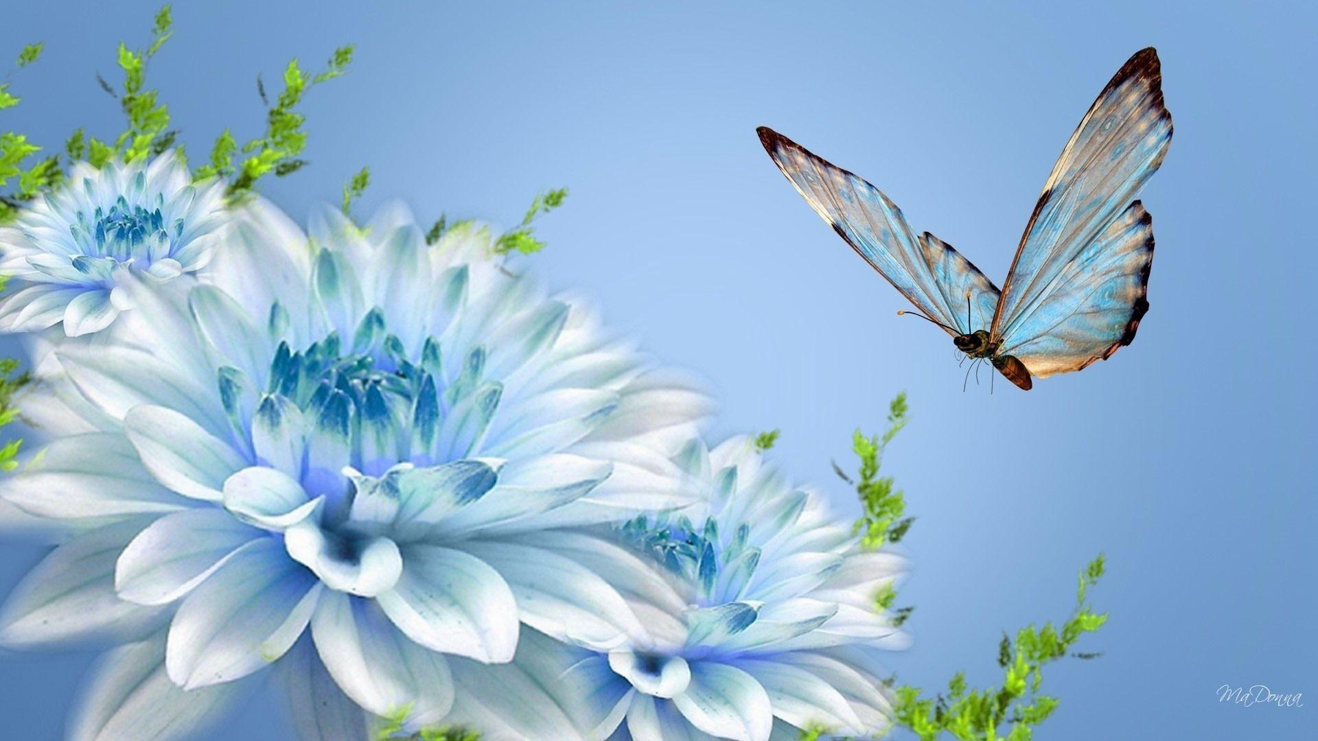 9. type-of-flowers-wallpaper9-600×338