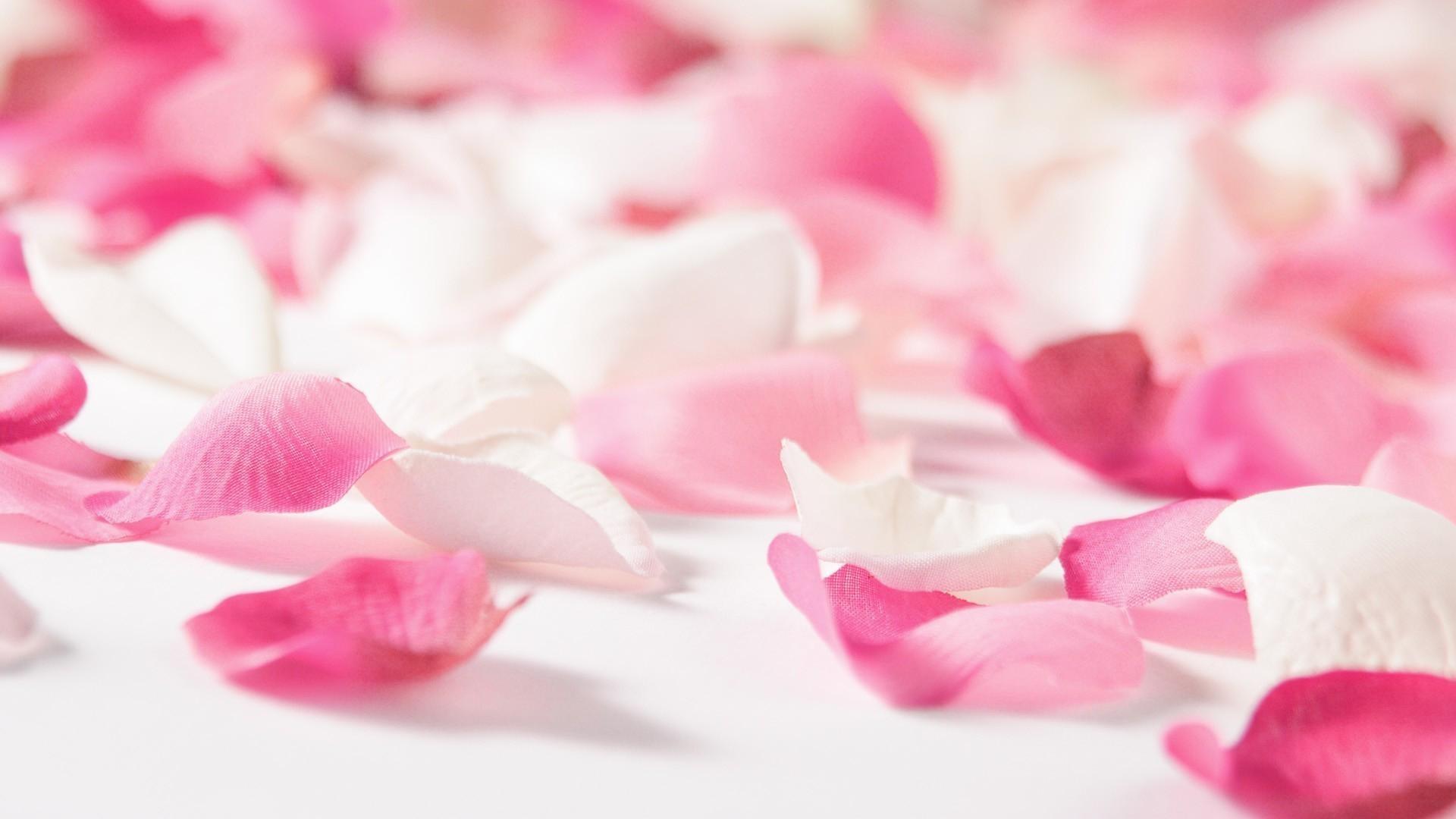 wallpaper.wiki-Pink-Flowers-Wallpaper-Full-HD-PIC-