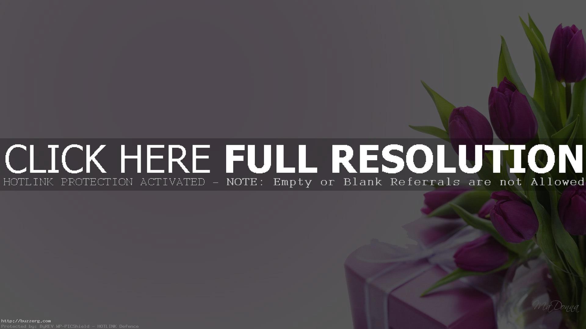 Purple Tulips Gift (id: 120020)