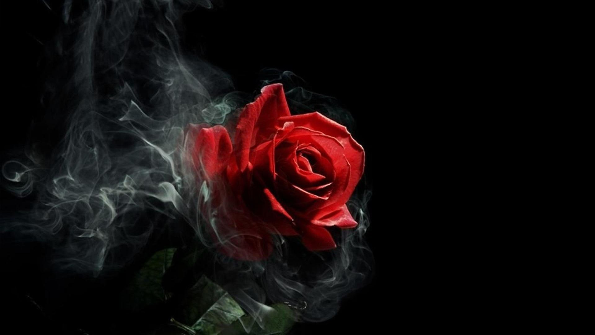"""Full HD HD Tablet 10"""" Tablet 7"""". Wallpaper Name : Gothic Rose …"""