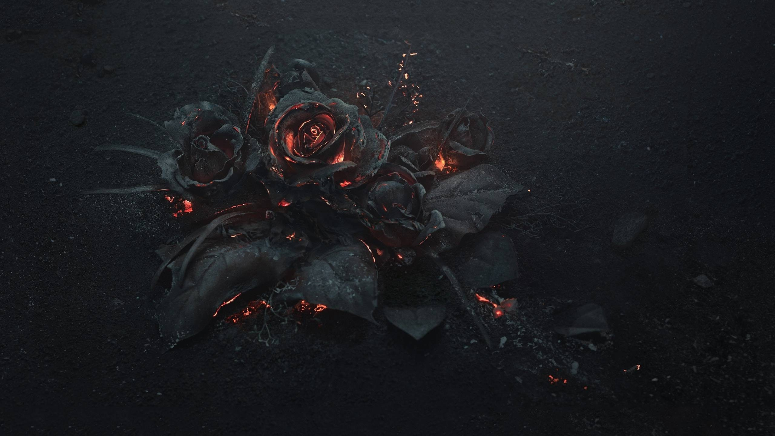 flowers, Rose, Fire, Gothic Wallpapers HD / Desktop and Mobile Backgrounds