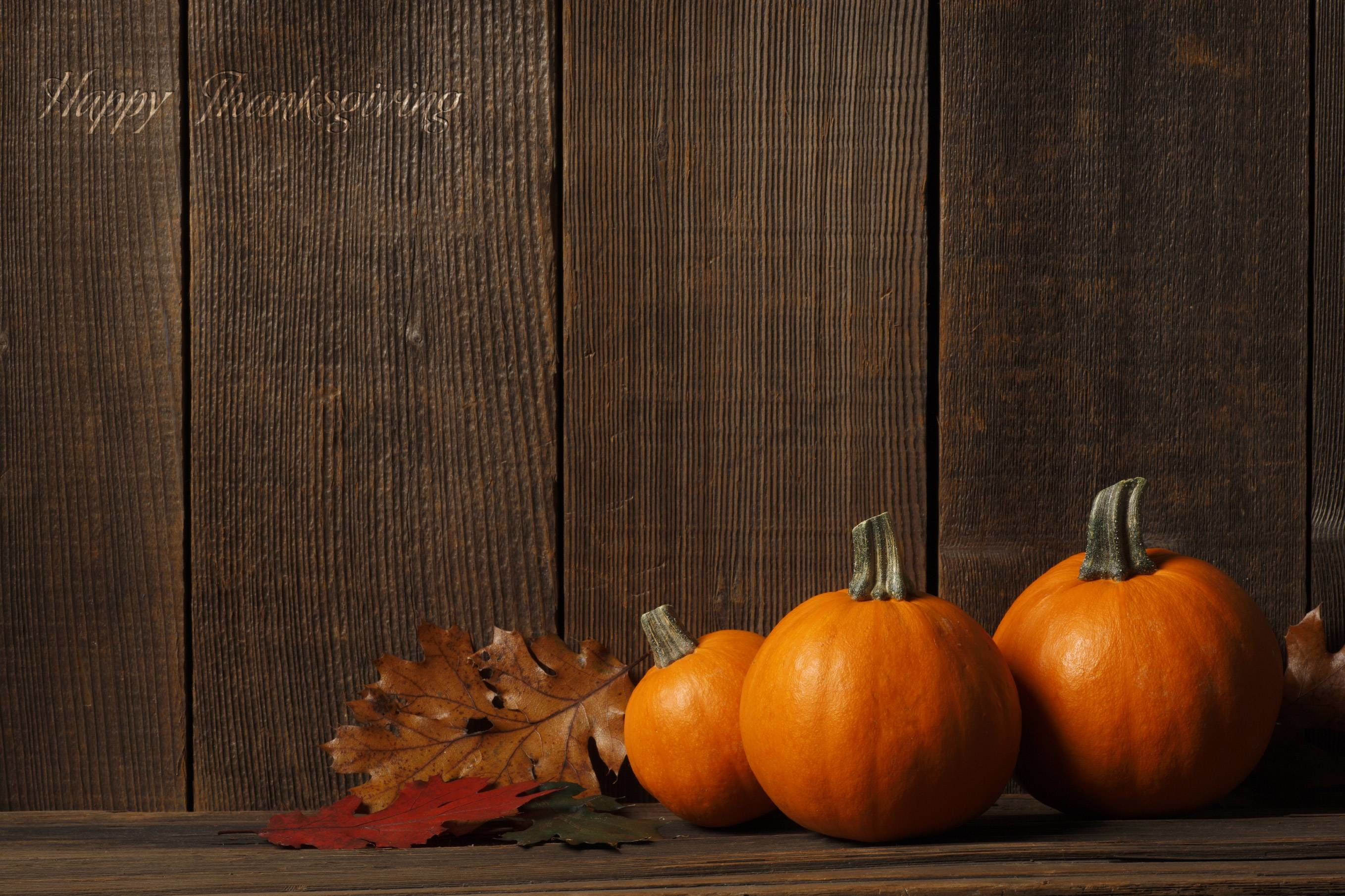 Download Pumpkins & Wood Fence …