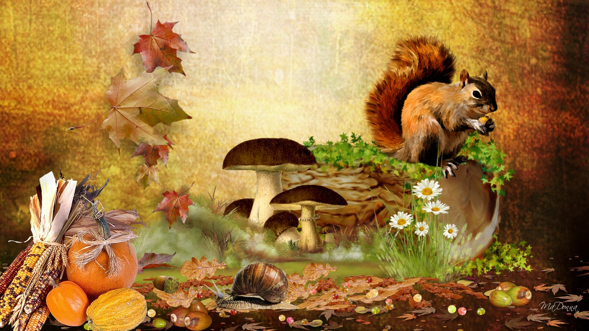 Fall with Animal HD Desktop Background Wallpapers 4034 – Amazing .
