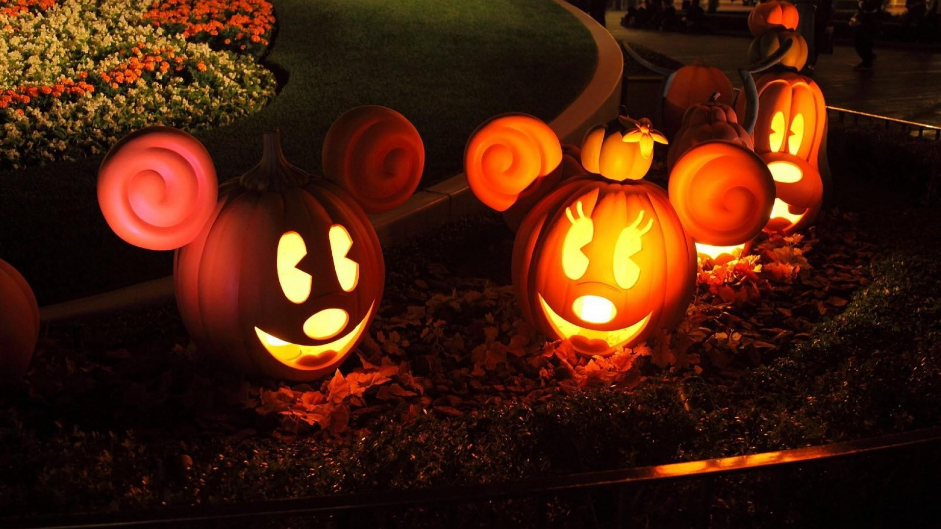 Wallpaper halloween, pumpkins, models, mickey mouse, flowerbed,  light
