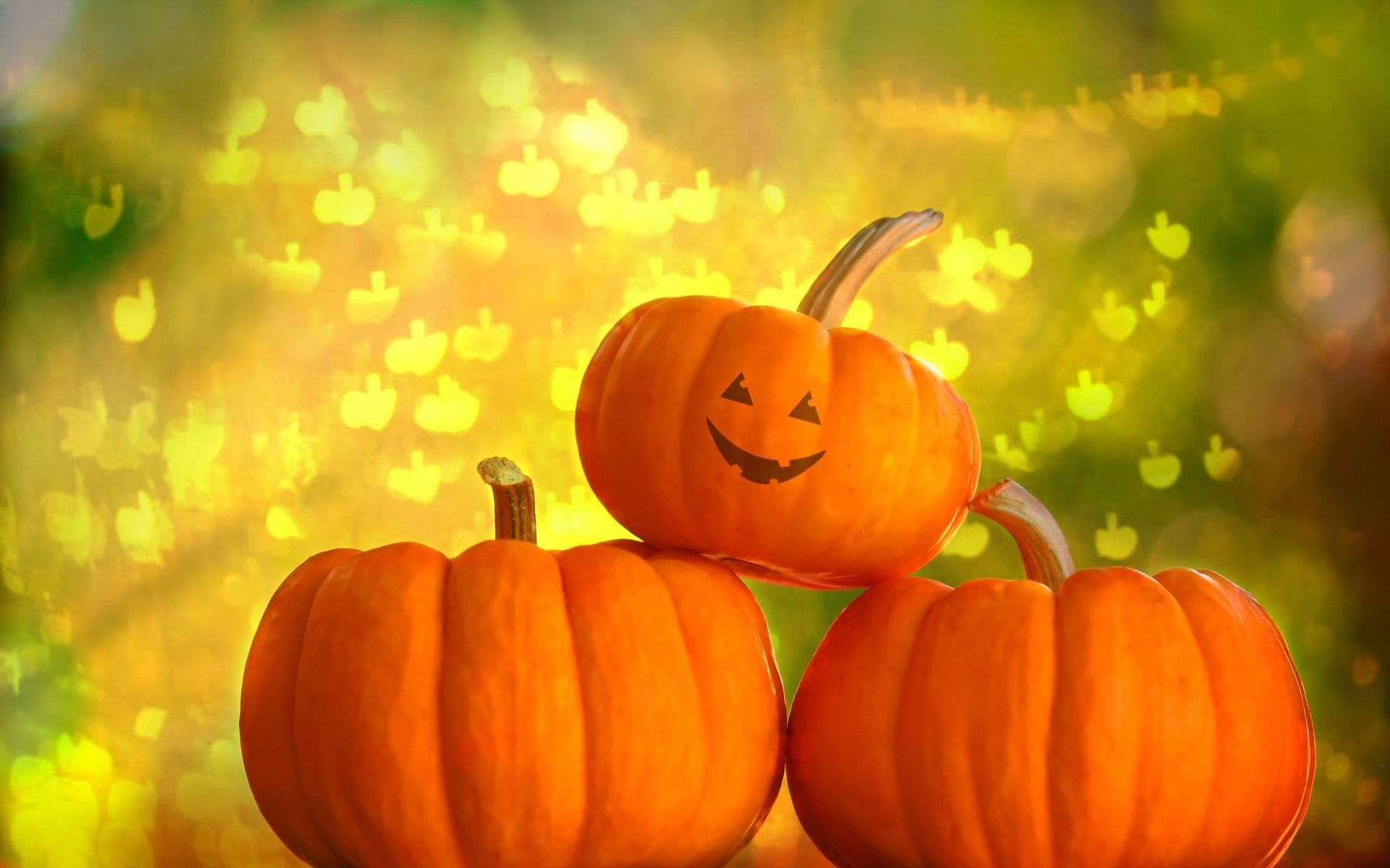 Halloween Pumpkins Desktop Wallpaper – WallpaperSafari. Halloween Pumpkins  Desktop Wallpaper WallpaperSafari