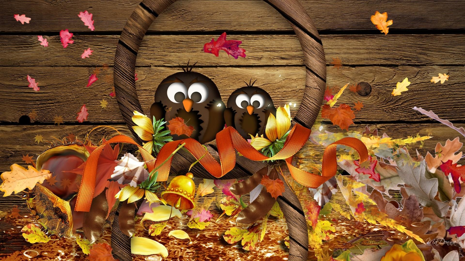 Cute Thanksgiving Screensavers | Thanksgiving HD Desktop Wallpapers for…