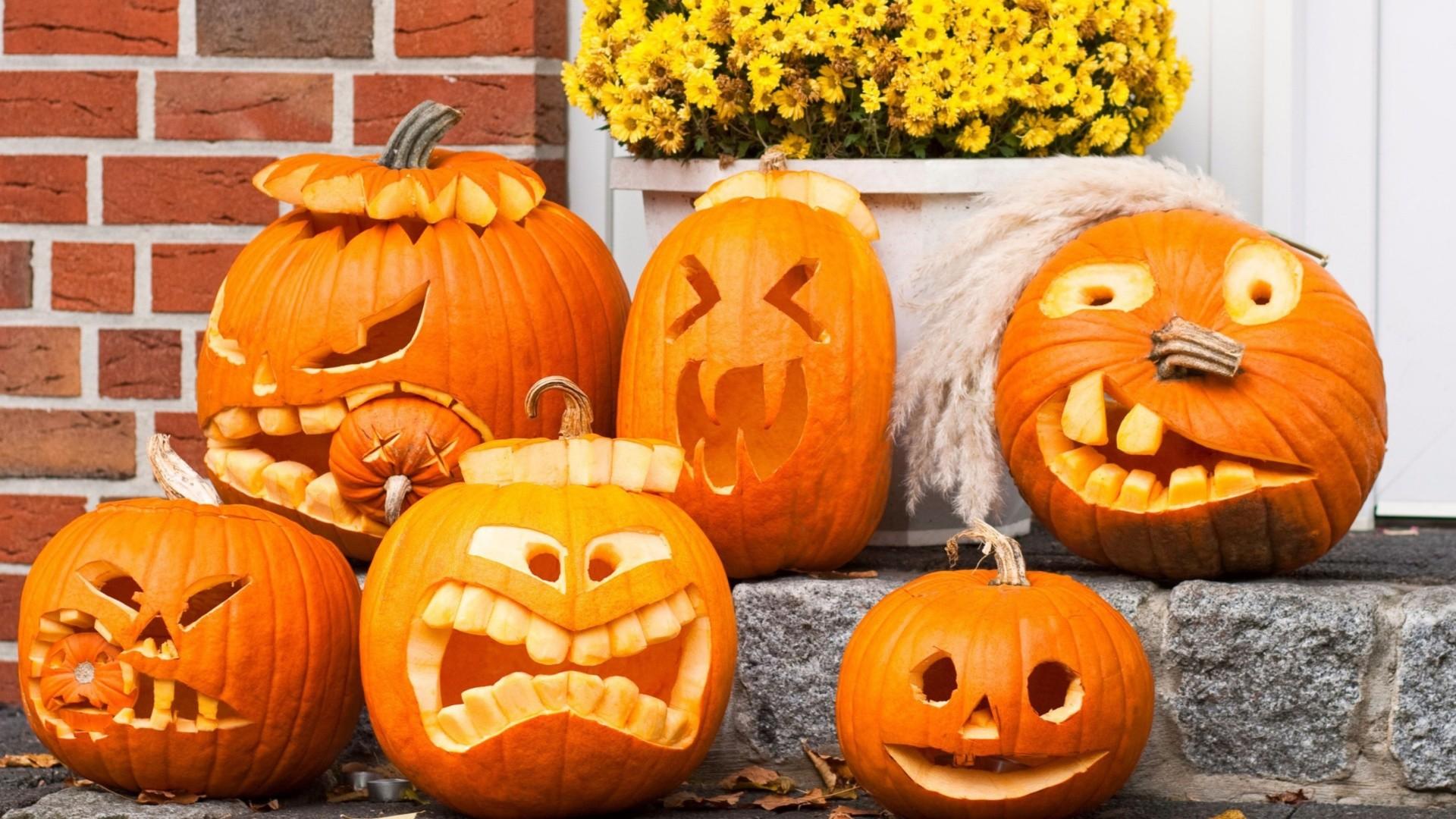 free Halloween Pumpkin wallpaper screensaver .