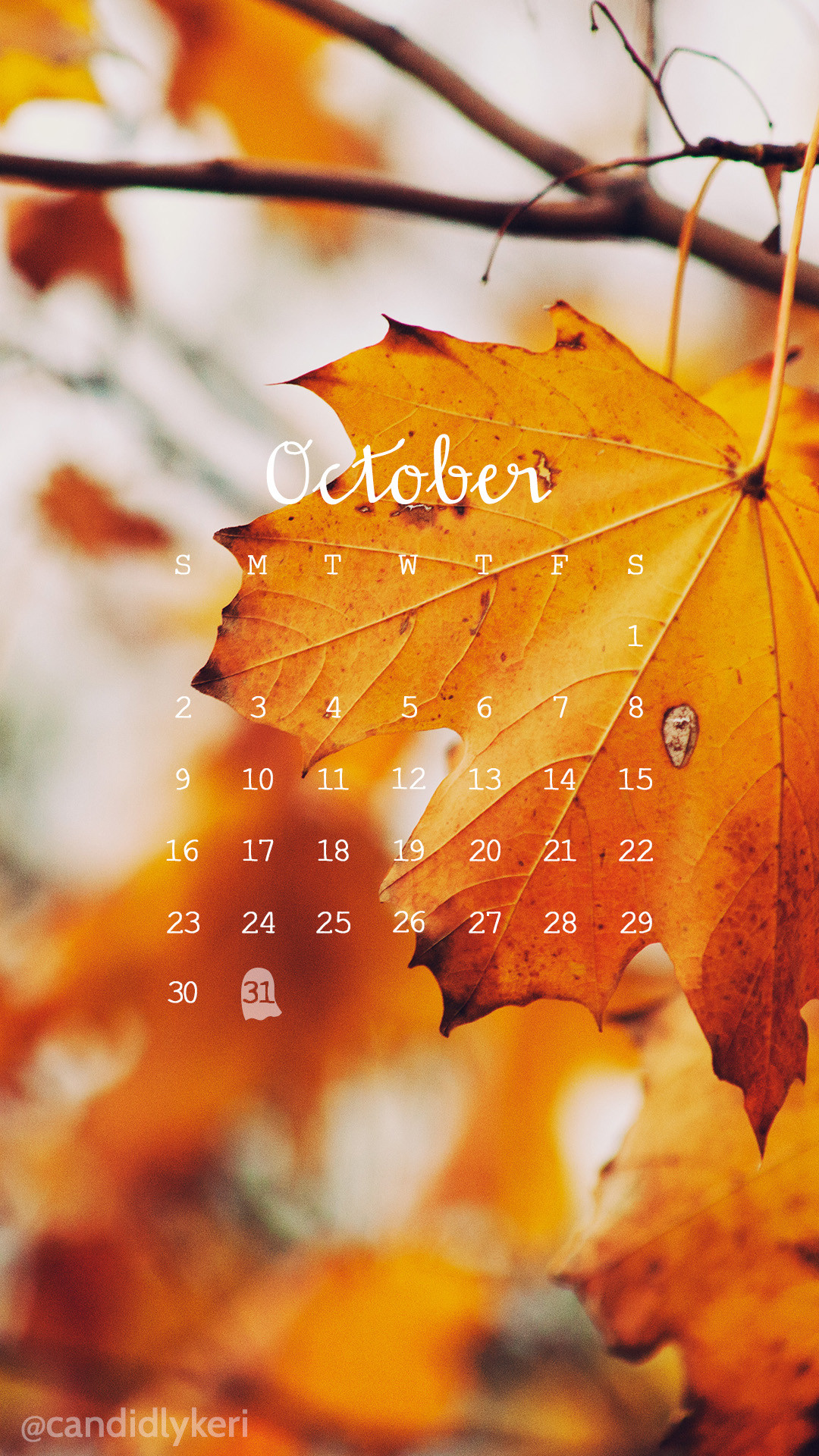 Fall leaves photo October calendar 2016 wallpaper you can download for free  on the blog!