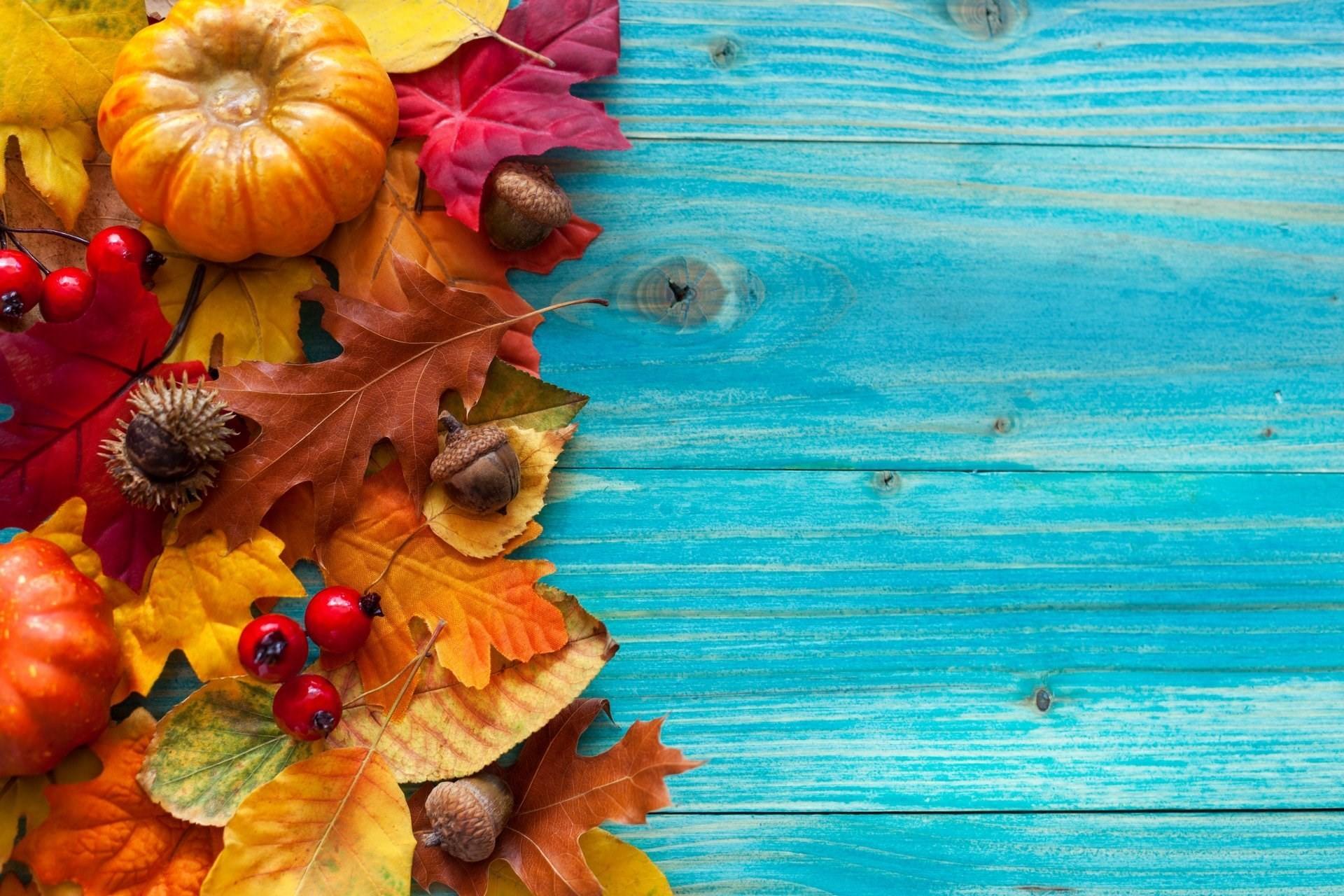 #28336, pumpkin fall category – free pictures pumpkin fall