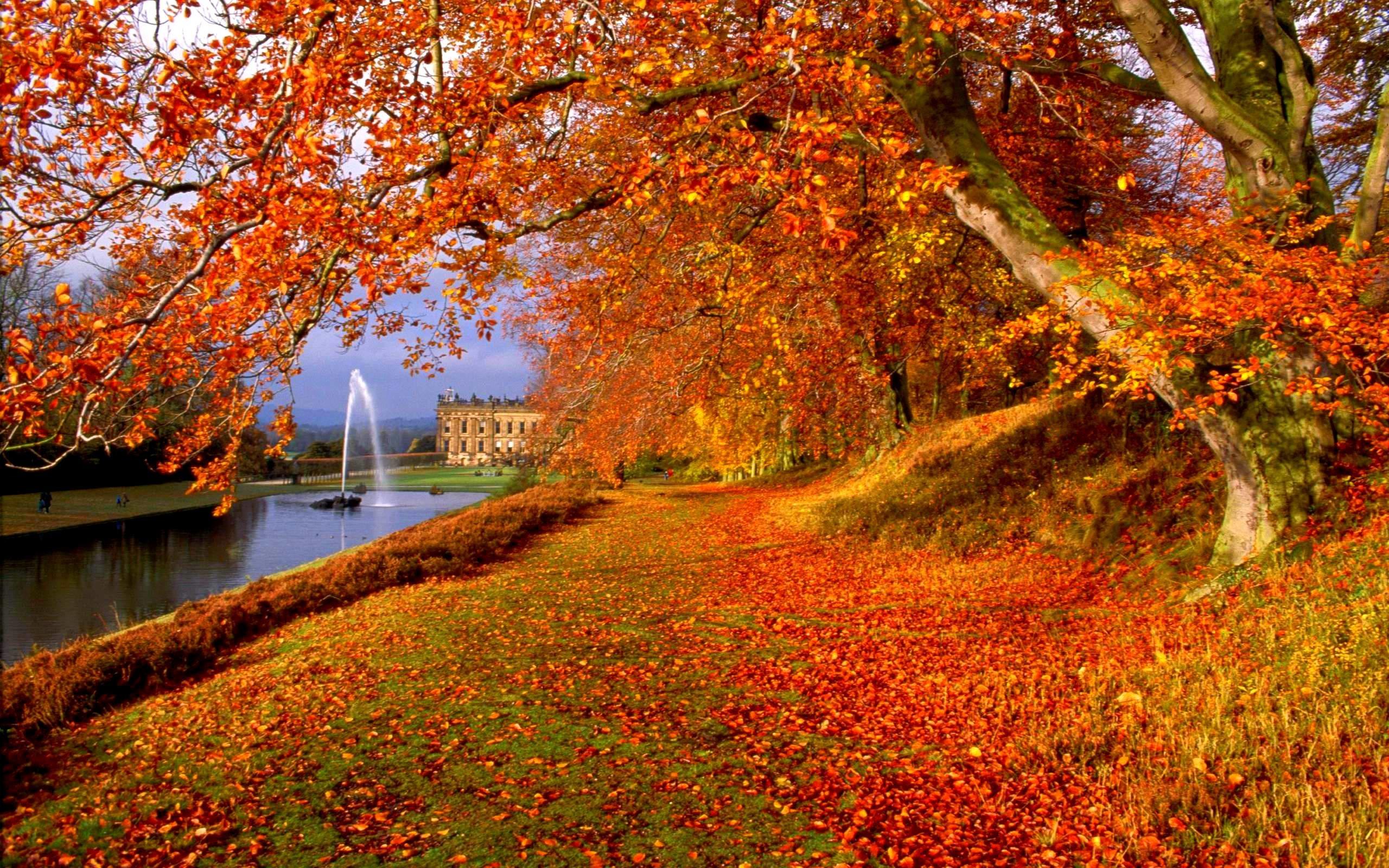 Free Autumn Backgrounds Wallpaper | Best Free Wallpaper