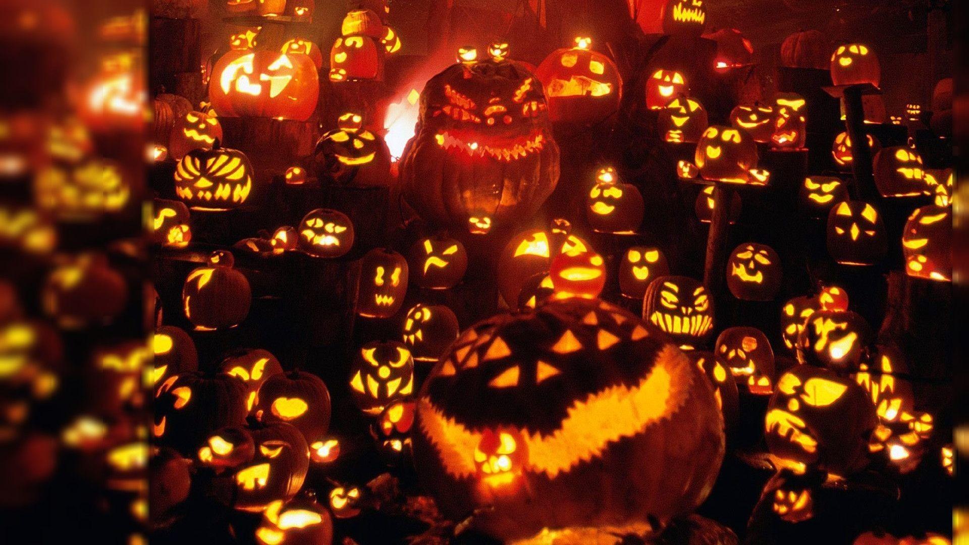 Halloween Pumpkin Backgrounds.