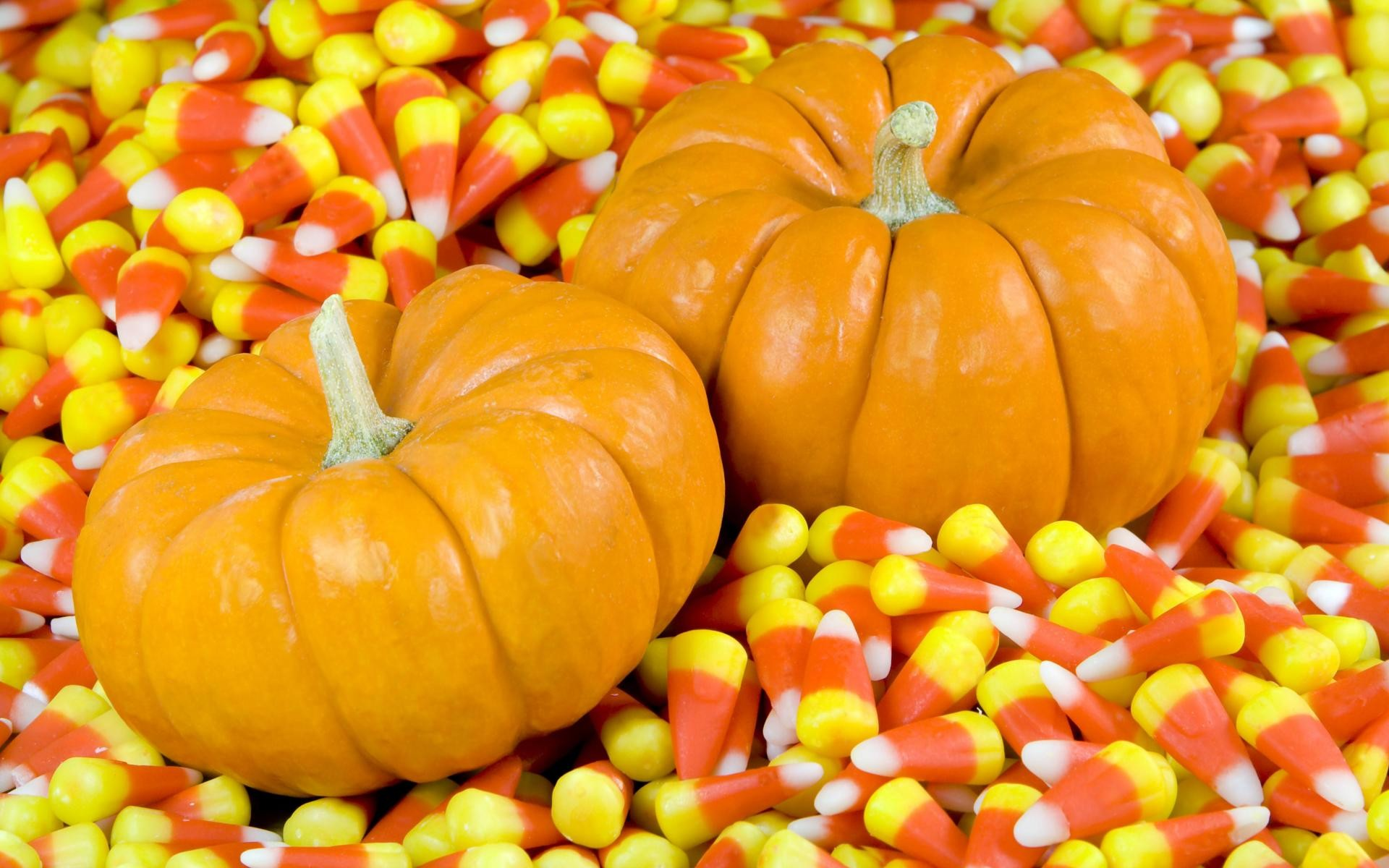fall,candy,autumn,halloween background wallpapers