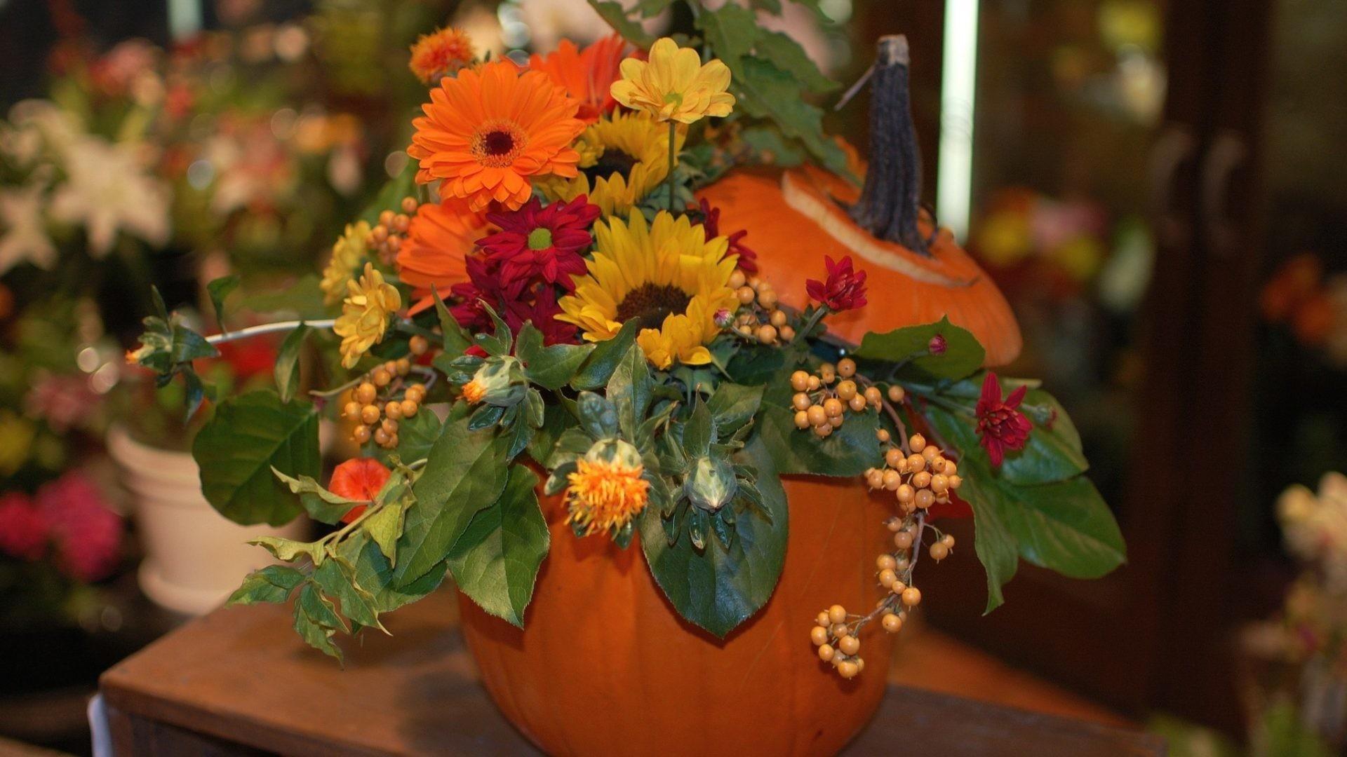 Pumpkin Tag – Bouquet Nature Bouquets Autumn Flowers Pumpkin Wallpaper Hd  for HD 16:9