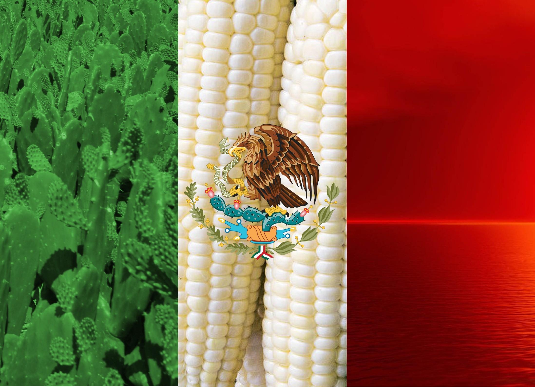 A proper Mexican flag wallpaper …
