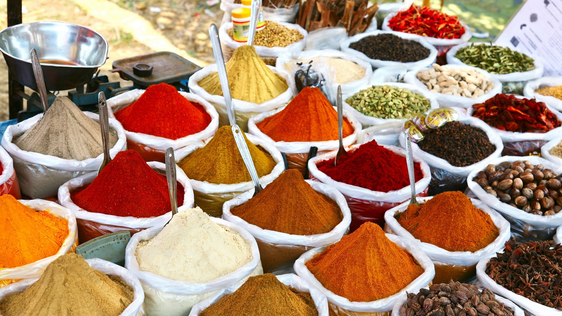 Taste of India Food Tour – Exclusively escorted by Valerie & Courtney from  My Kitchen Rules – Transair International Travel