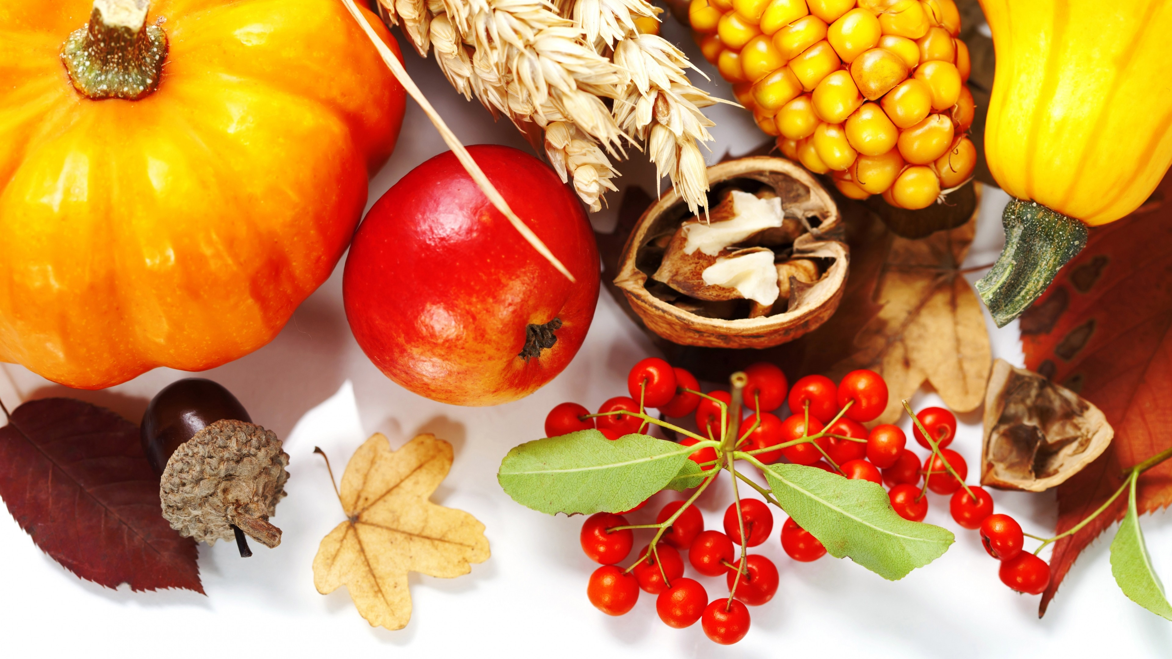 Wallpaper food, composition, fall, white background