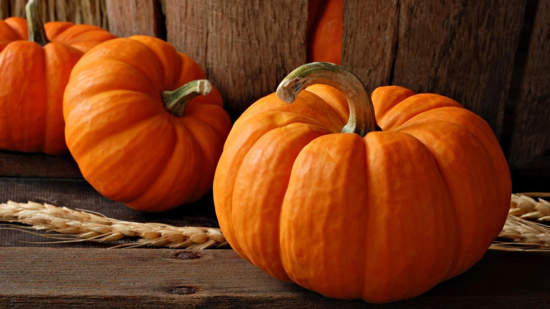 Pumpkin Wallpapers