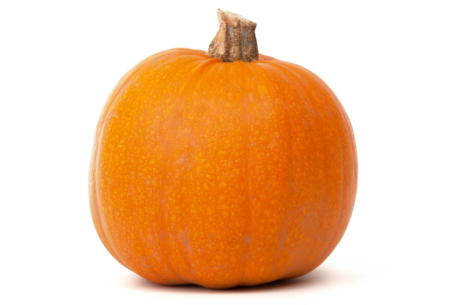 pumpkin free picture backgrounds