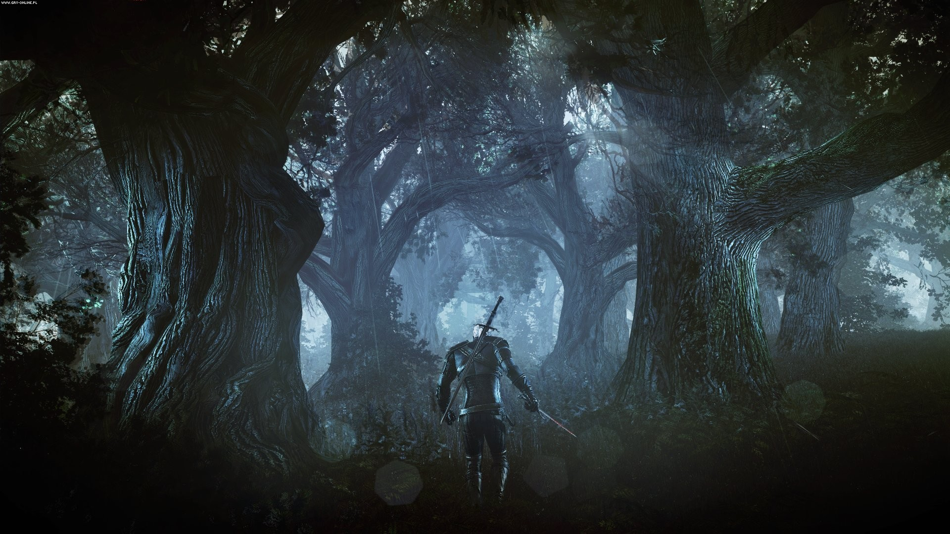 Video Game – The Witcher 3: Wild Hunt Wallpaper