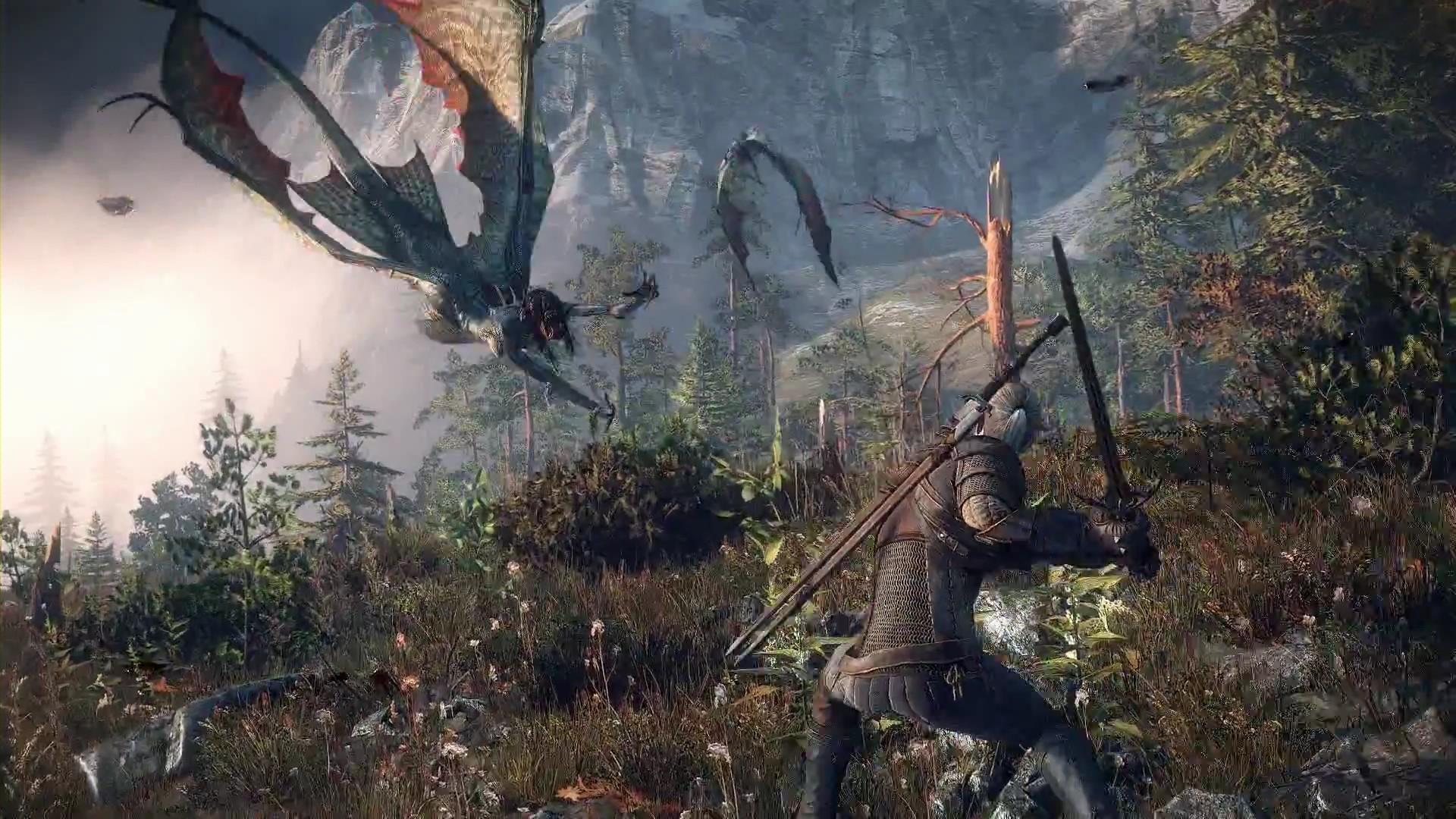 The Witcher 3: Wild Hunt Computer Wallpapers, Desktop Backgrounds .