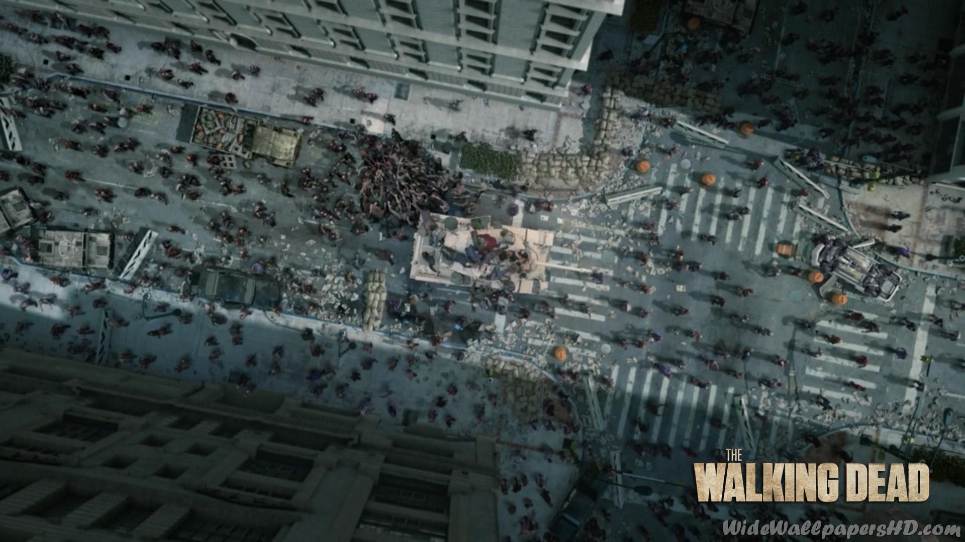 … 1920 × 1080 pixels. Shane-Walsh-2-The-Walking-Dead-Wide-HD-Wallpapers