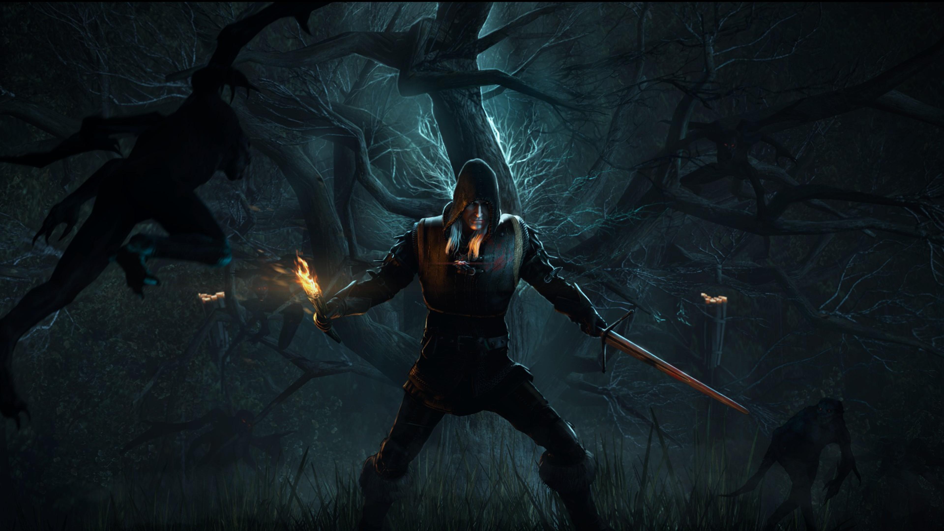 Wallpaper the witcher 3, wild hunt, forest, warrior, torch
